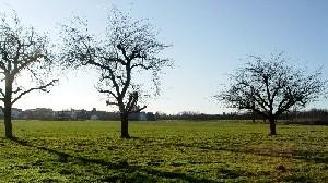 Die Bölz, wie sie heute aussieht (Foto: wjk)